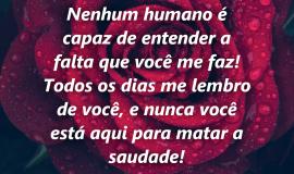 Imagem de Imagem de Luto com frase – Nenhum humano é capaz de entender a falta que você me faz!